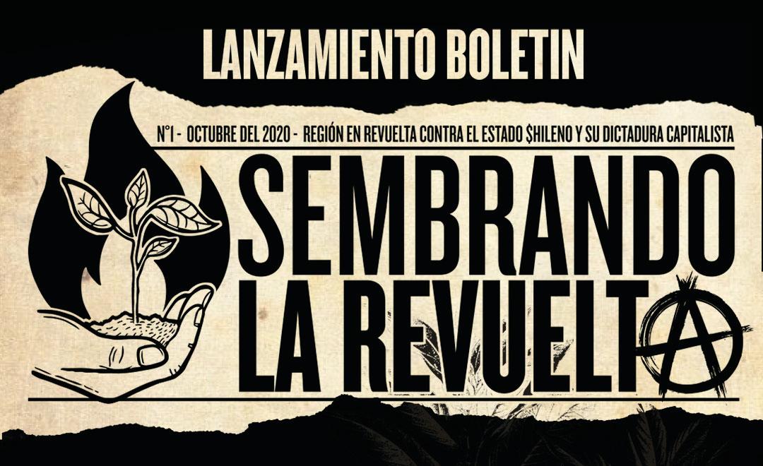 Lanzamiento del boletín «Sembrando la revuelta, reflexiones anarquistas a un año del estallido»