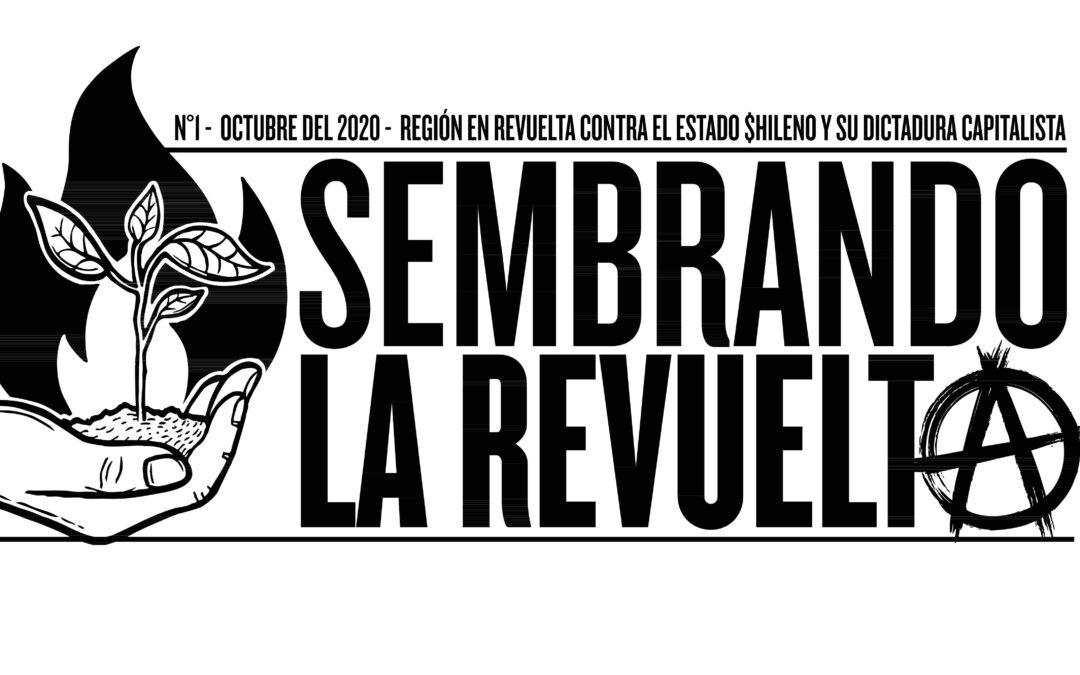 Boletín «Sembrando la revuelta, reflexiones anarquistas a un año del estallido»